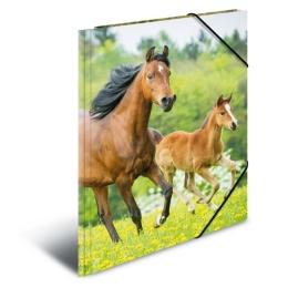 Doska s gumičkou PP A4 Horses
