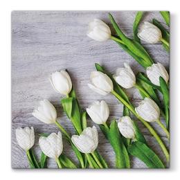 Obrúsky PAW L 33X33cm White Tulips