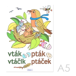 Omaľovánka A5 Litera - Vtáčik