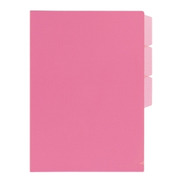 Folder in folder + 3 x L FL101CH pink binder